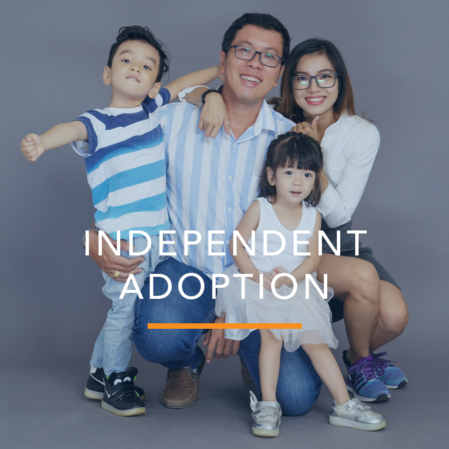 Independent/Agency Adoption